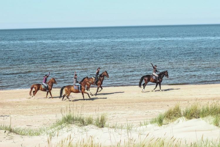 Pasivaikščiojimas ant arklių regioniniame parke.